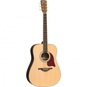 Custom Acoustic FG75