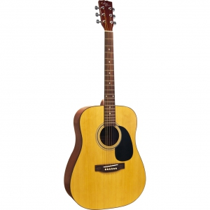 Custom Acoustic FG701 (1D-A)