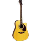 Custom Acoustic FG807CEQ