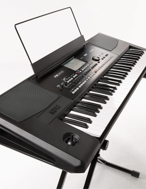 Korg PA300 - 61-key Professional Arranger Keyboard