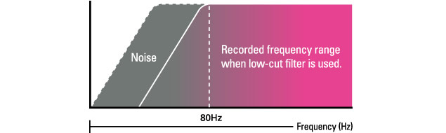 Zoom Q2HD - Low Cut Filter