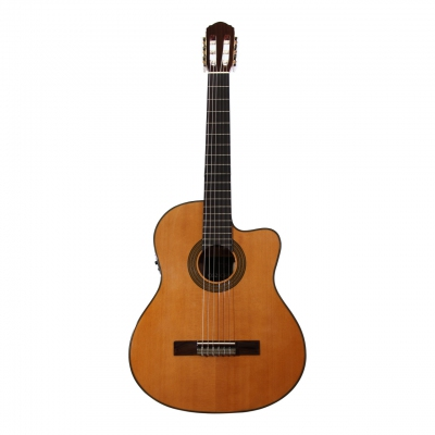 Custom Acoustic CG25CEQ
