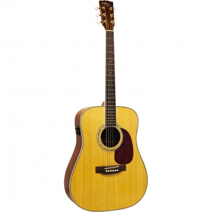 Custom Acoustic FG27E (4DEG)