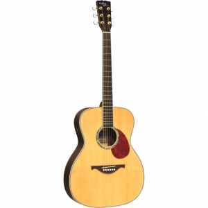 Custom Acoustic FG30E